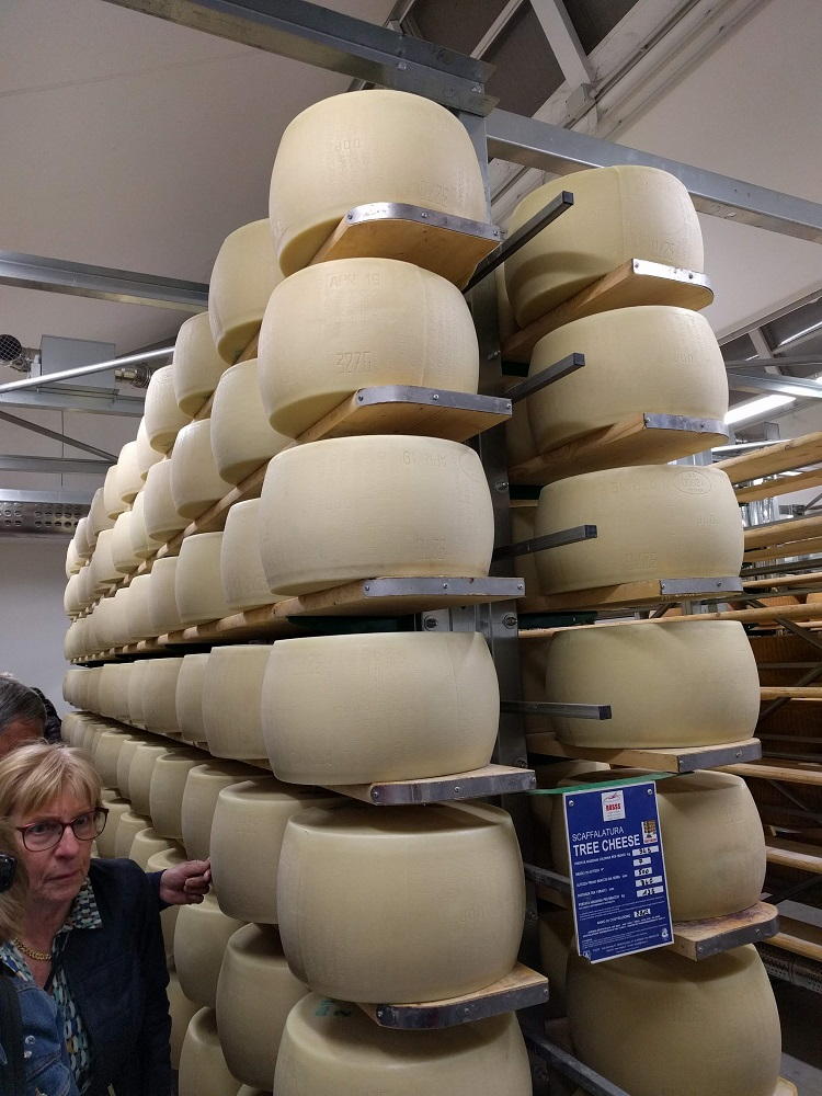 Parma - verse kaaswielen